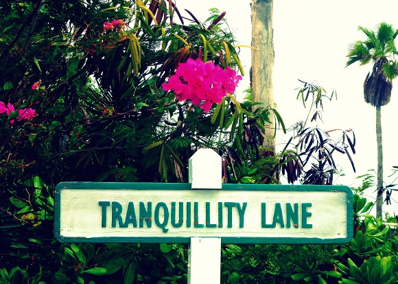 an aptly named local street!